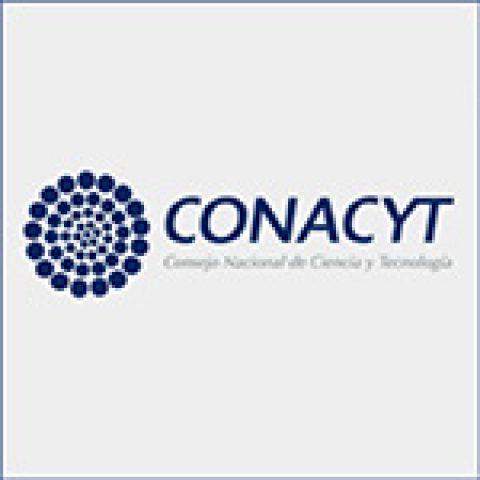 CONACYT – Crédito Constructor