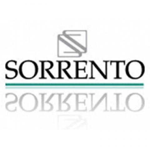 SORRENTO – CC Galerías Insurgentes